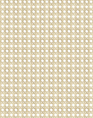 Caning Sesame  Wallpaper