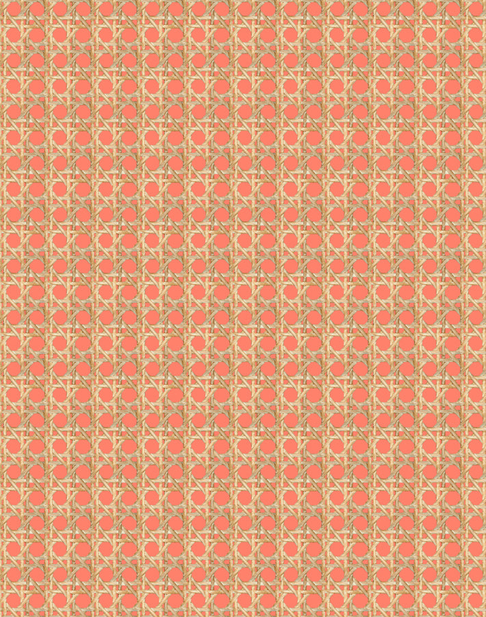 Caning Removable Wallpaper - Watermelon - Wallshoppe