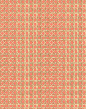 Caning Watermelon  Wallpaper