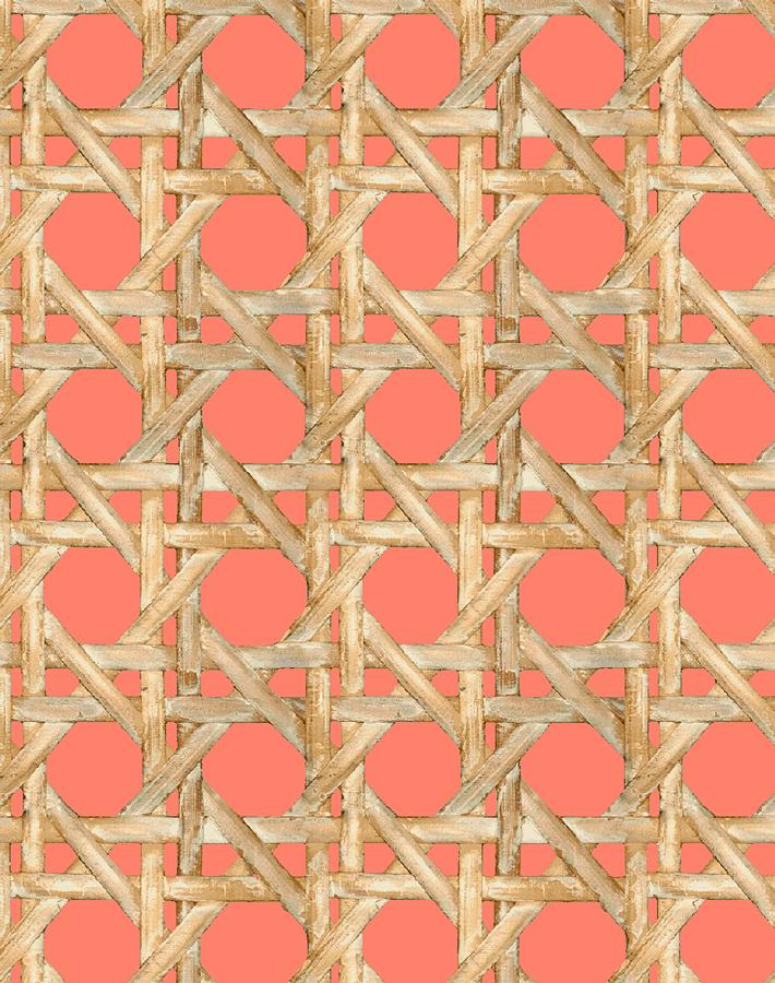Caning Wallpaper - Watermelon - Wallshoppe
