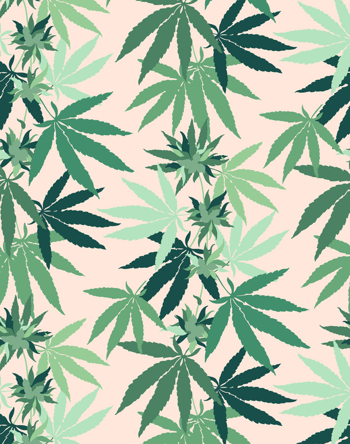 Cannabis Removable Wallpaper - Peach - Wallshoppe
