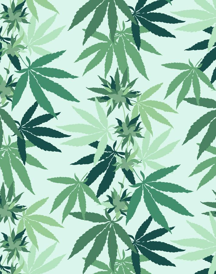 Cannabis Robins Egg  Wallpaper