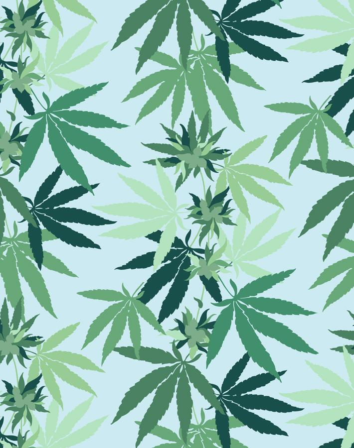 Cannabis Sky  Wallpaper