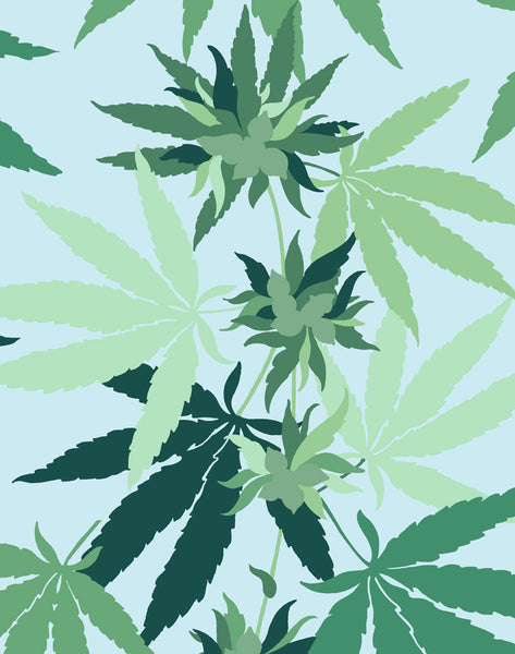 Cannabis Removable Wallpaper - Sky - Wallshoppe