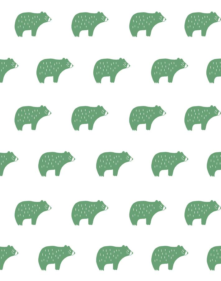 Chubby Bear Aloe  Wallpaper