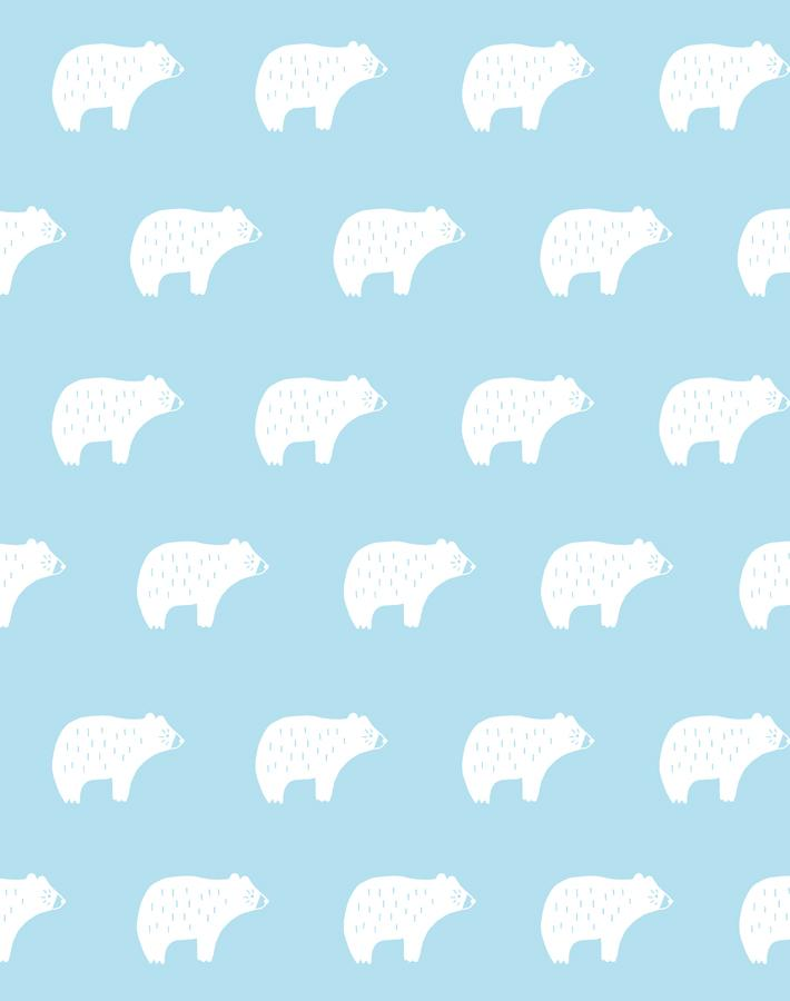 Chubby Bear Baby Blue  Wallpaper