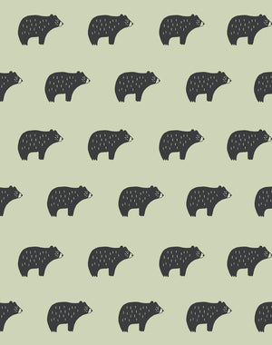 Chubby Bear Pistachio  Wallpaper
