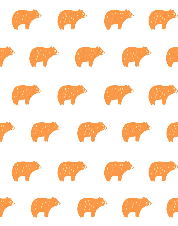 Chubby Bear Pushpop  Wallpaper