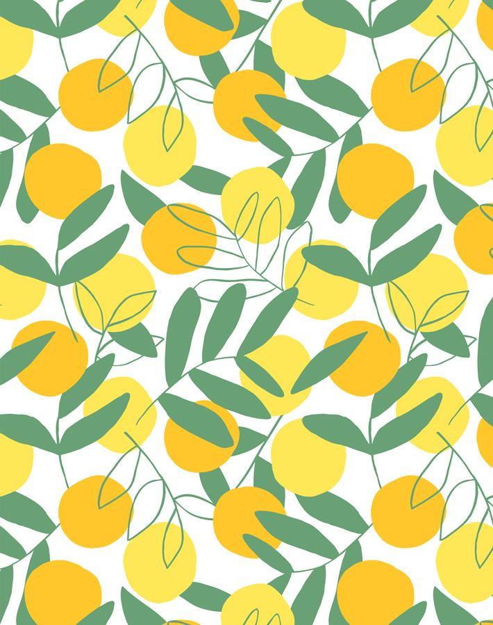 Citrus Yellow  Wallpaper