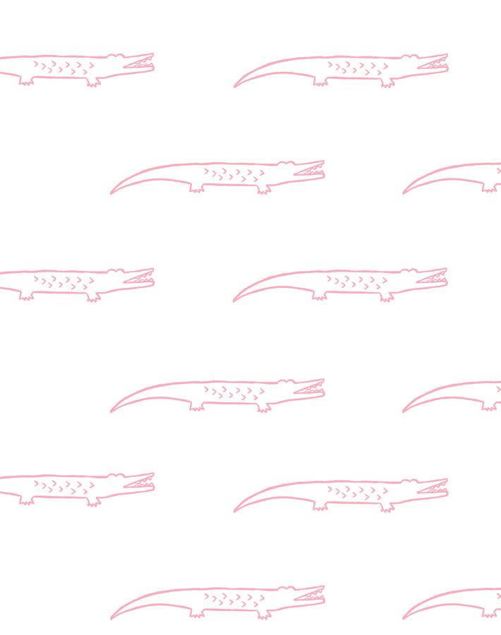 Crocodile Bubblegum  Wallpaper