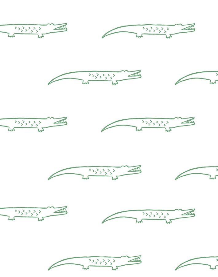 Crocodile Green  Wallpaper
