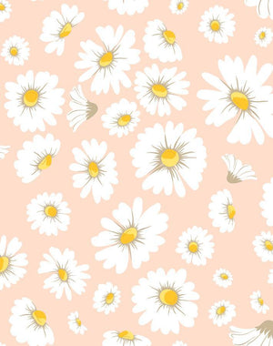 Daisy Bloom Peach  Wallpaper