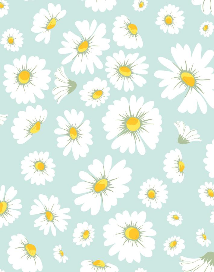Daisy Bloom Seafoam  Wallpaper