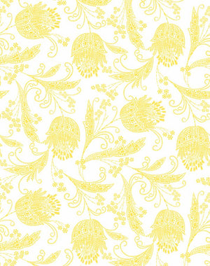 Dear Prudence Daffodil  Wallpaper