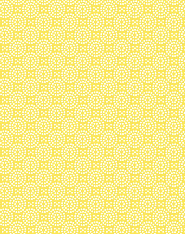 Dot Dot Daffodil  Wallpaper