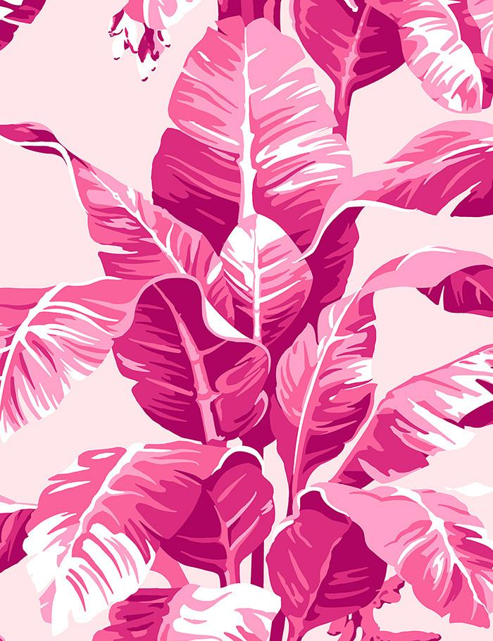 Electric Palm Pink  Wallpaper