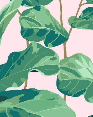 Fiddle Fig Pink  Wallpaper