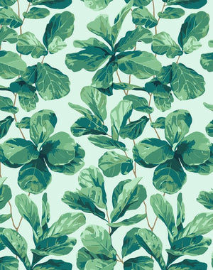 Fiddle Fig Robins Egg  Wallpaper