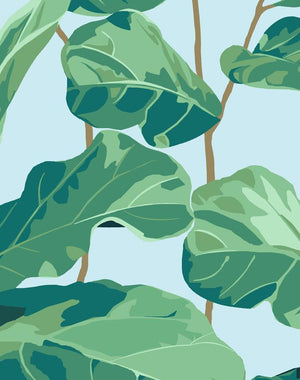Fiddle Fig Sky  Wallpaper