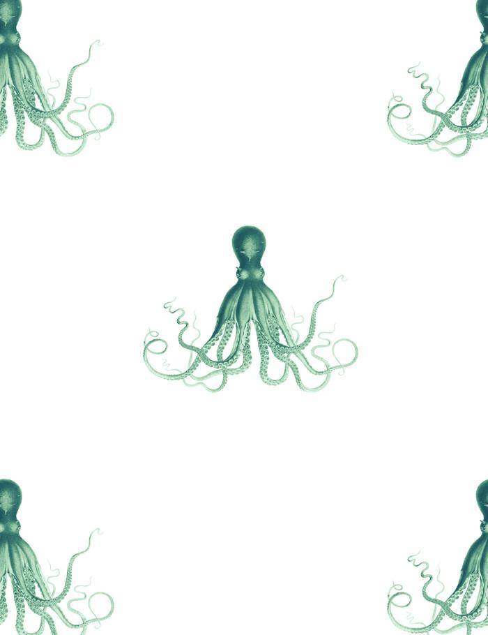 George The Octopus Green  Wallpaper