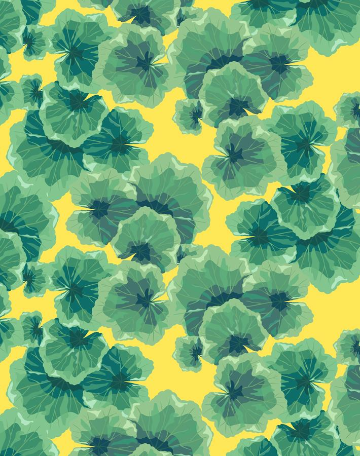 Geranium Leaves Daffodil  Wallpaper