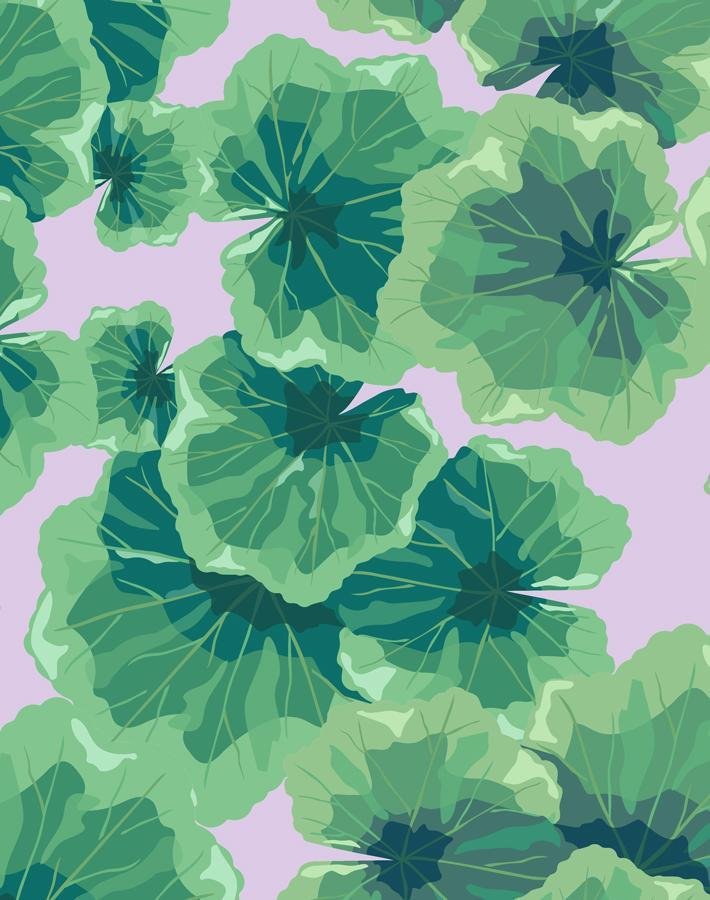 Geranium Leaves Lavender  Wallpaper