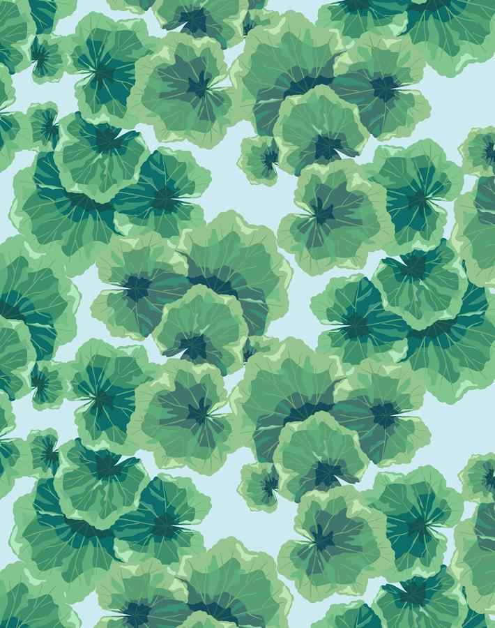 Geranium Leaves Sky  Wallpaper
