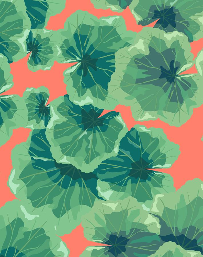 Geranium Leaves Watermelon  Wallpaper