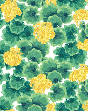 Geranium Yellow  Wallpaper