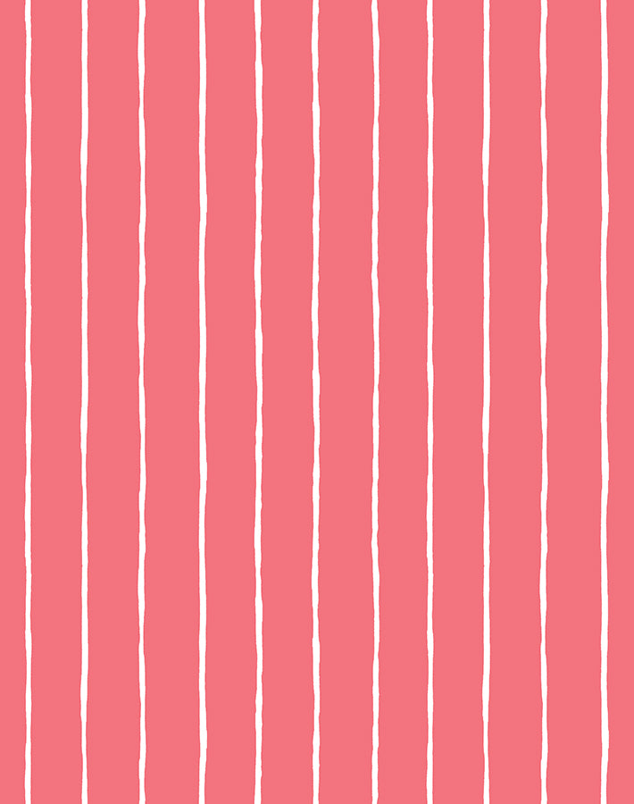 Get In Line Flamingo  Wallpaper