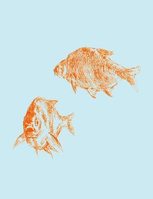 Goldfish Blue  Wallpaper