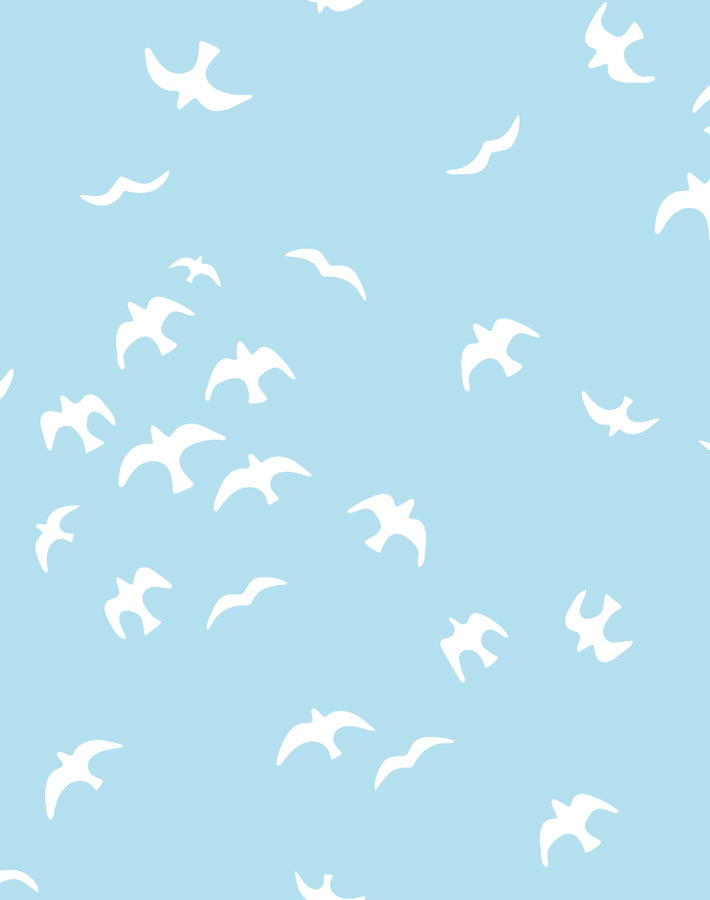 Gulls Baby Blue Wallpaper