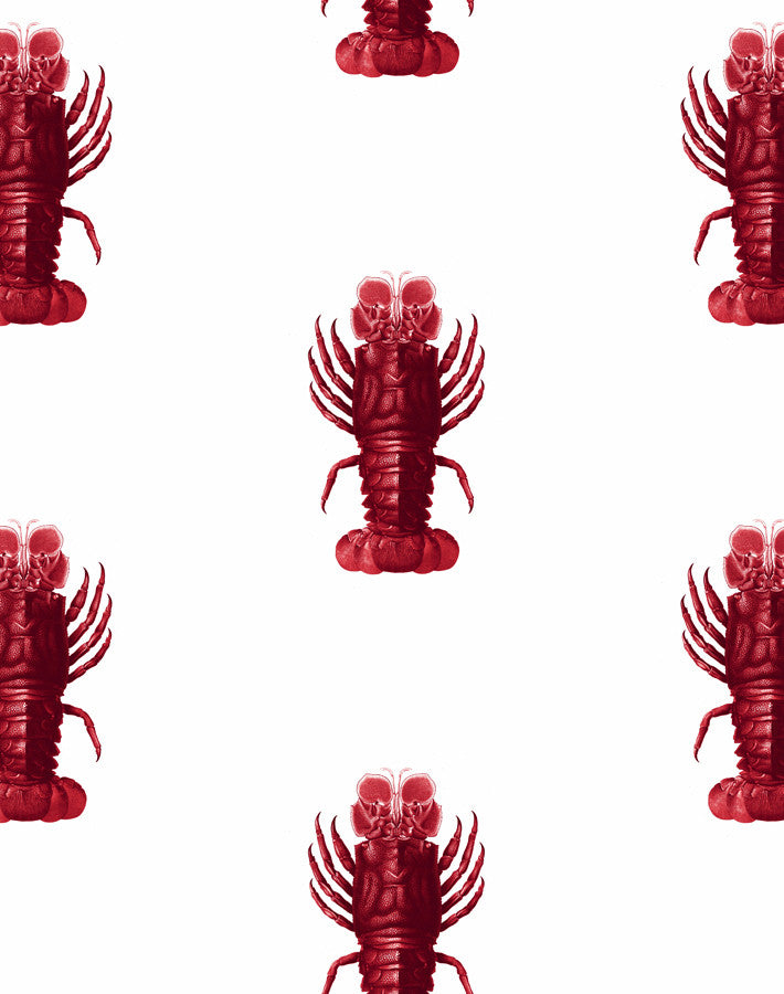 Jack the Crustacean Wallpaper - Red