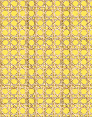 Large Caning Daffodil  Wallpaper