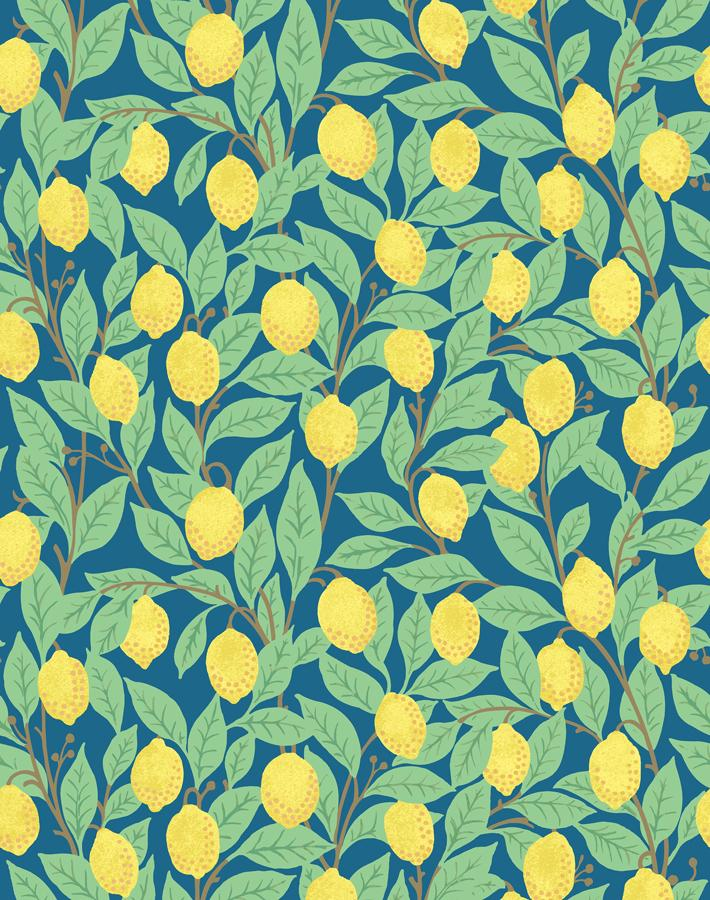 Lemons Cadet Blue  Wallpaper