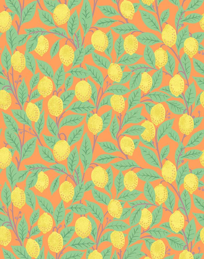 Lemons Orange  Wallpaper