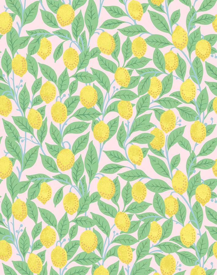 Lemons Pink  Wallpaper