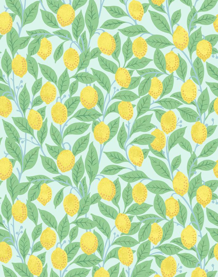 Lemons Robins Egg  Wallpaper