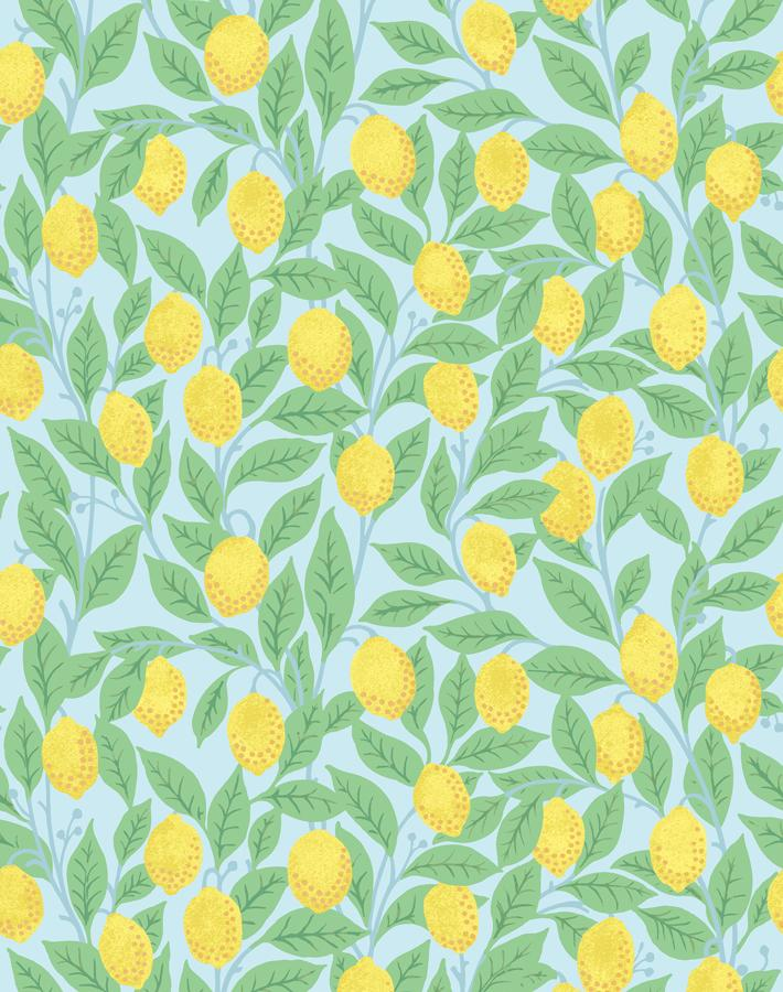 Lemons Sky  Wallpaper