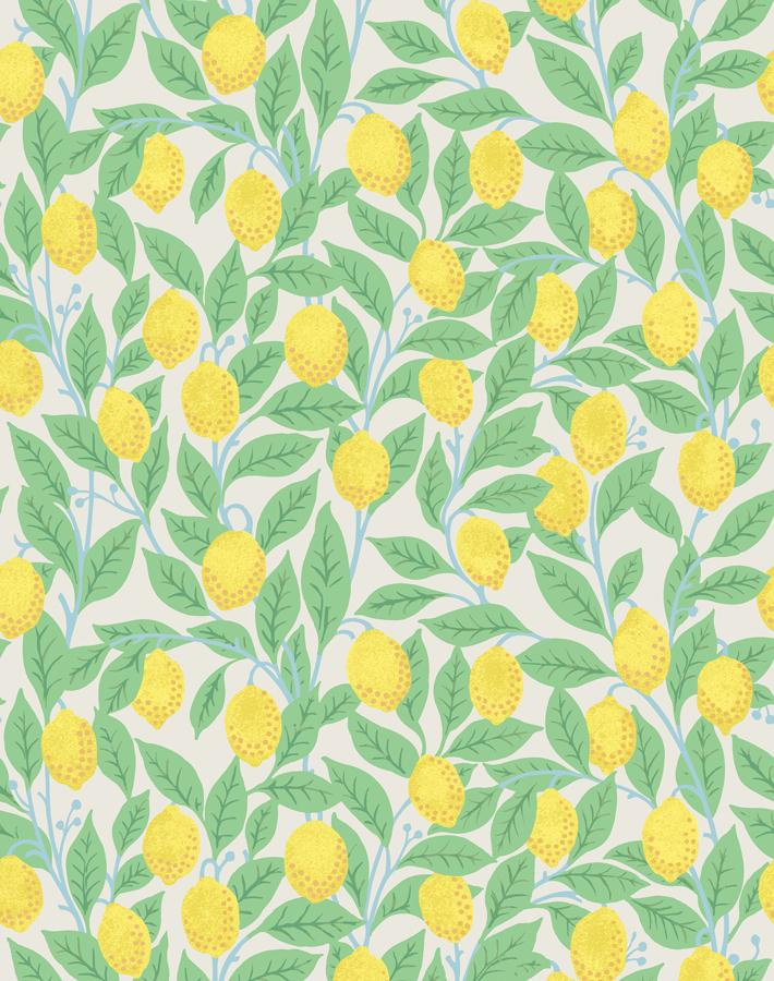 Lemons Stone  Wallpaper