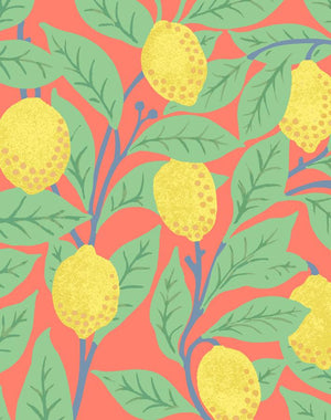 Lemons Watermelon  Wallpaper