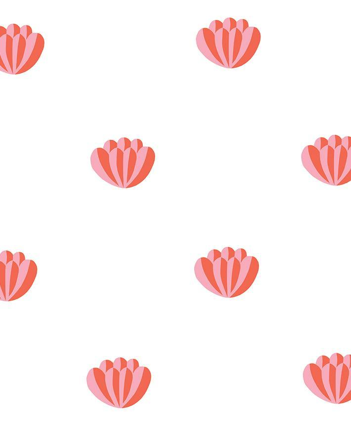Lotus Watermelon  Wallpaper