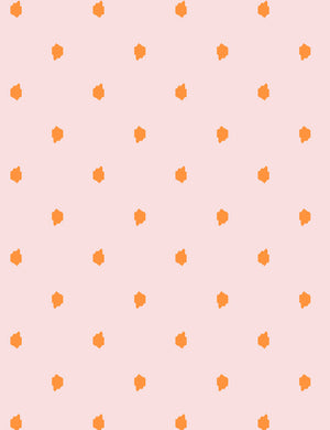 Medina Dot Pushpop Shell  Wallpaper