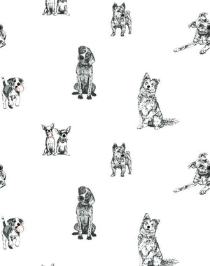 Mutts White  Wallpaper