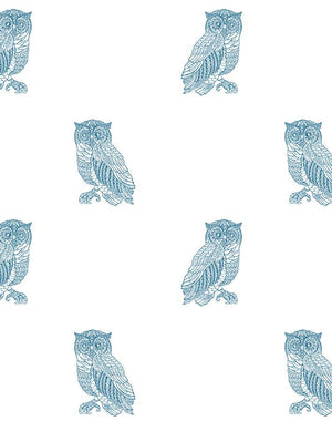Otus The Owl Cadet Blue On White  Wallpaper