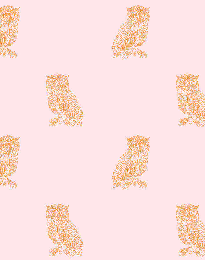 Otus the Owl Wallpaper - Pink