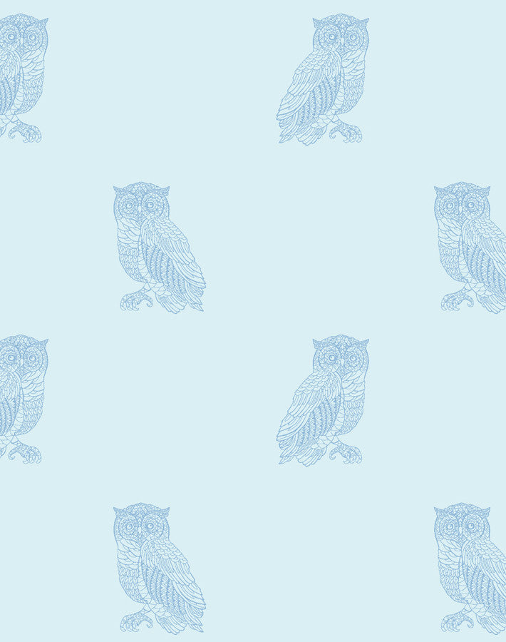 Otus The Owl Sky Cornflower Blue Wallpaper