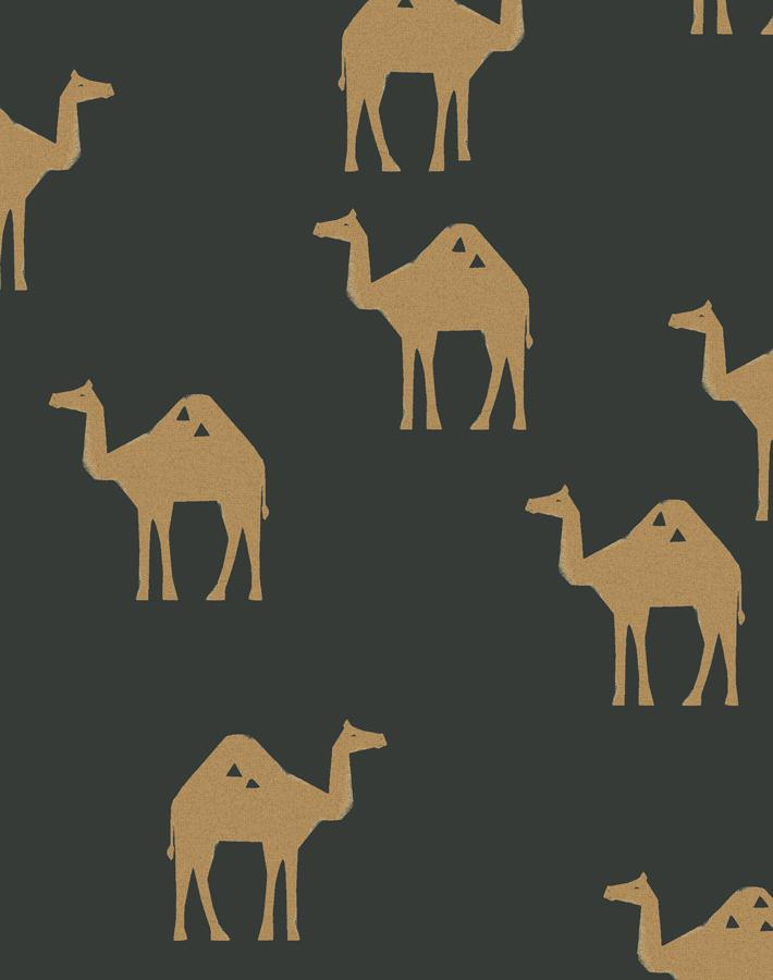 Oasis Camels Charcoal  Wallpaper