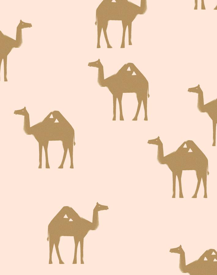 Oasis Camels Peach  Wallpaper