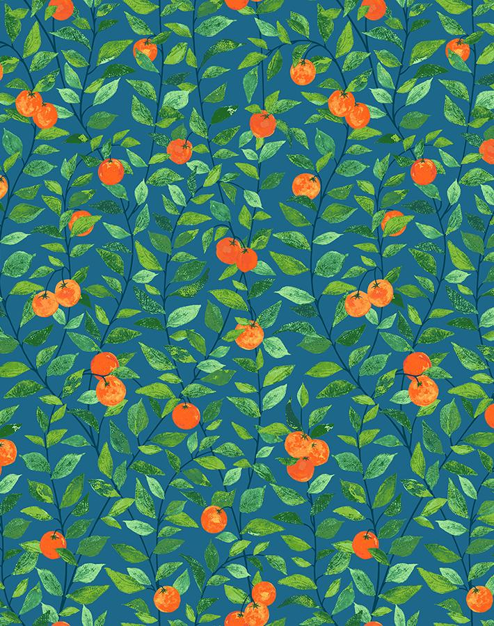 Orange Crush Cadet Blue  Wallpaper